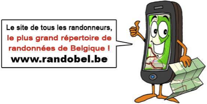 Newsletter - Randobel
